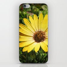 Flower Power 1 iPhone & iPod Skin