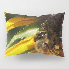 Desert Sunflower Cafeteria Pillow Sham