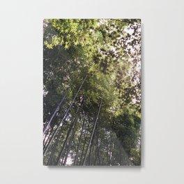 Bamboo Grove of Arashiyama // Kyoto Metal Print