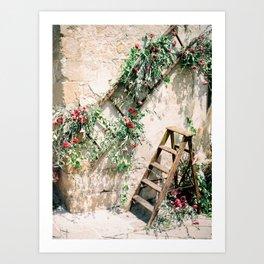 Tuscan Floral Art | Tuscany Italy fine art travel photography print | Botanical Art Print
