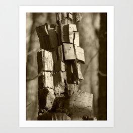 stump moai b & w Art Print