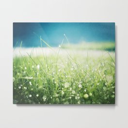 Dew Nature Photography, Green Blue Morning Dew Sparkle, Colorful Grass Photography Metal Print