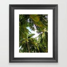 Maldivian palm Framed Art Print