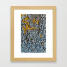 Natures Signature Framed Art Print