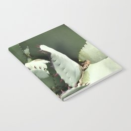 Agave Center Notebook