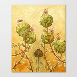 Artichokes Canvas Print