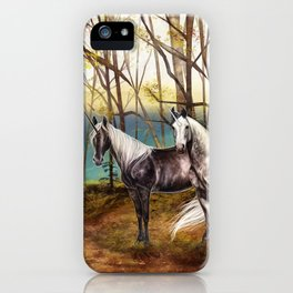A peaceful place iPhone Case