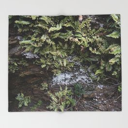 Fern Covered Coastal Cliff Face Throw Blanket