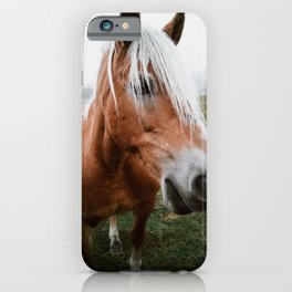 So cool horse iPhone Case