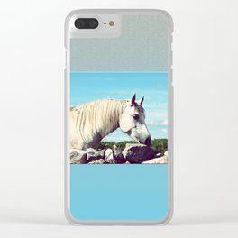 Connemara Pony 2 Clear iPhone Case