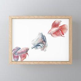 Fighting Fish Framed Mini Art Print
