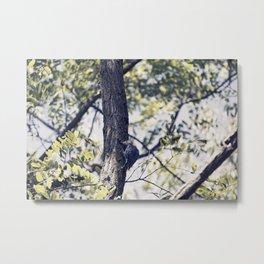Little Tree Hugger Metal Print