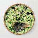 Moth Buddy by sarah_eudora