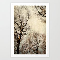 paint the sky with branches Art Print