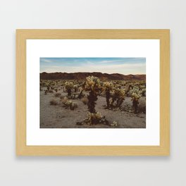Cholla Cactus Garden XII Framed Art Print
