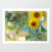 Kelly's Sunflowers Art Print