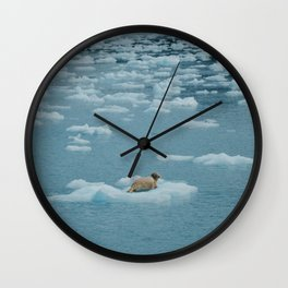 Sea lion on iceberg Wall Clock