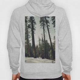 Winter Sequoia Forest Hoody