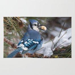 Christmas Blue Jay Rug