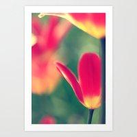 tulips Art Prints featuring tulips by Falko Follert Art-FF77
