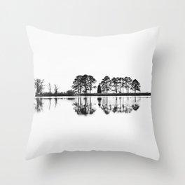 Reflection Complexion Throw Pillow