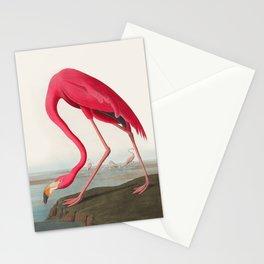 Fuchsia Flamingo Audobon Painting Stationery Cards