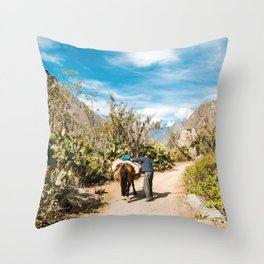 El Burro | Street Travel Photography of Man with Donkey on Road in Peru Throw Pillow