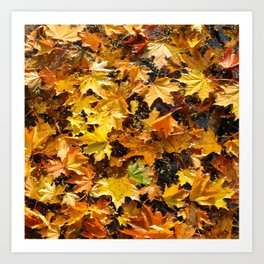 Autumn Photography - A Pile Of Colorful Leaves Art Print