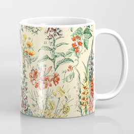 Wildflower Diagram // Fleurs II by Adolphe Millot XL 19th Century Science Textbook Artwork Coffee Mug