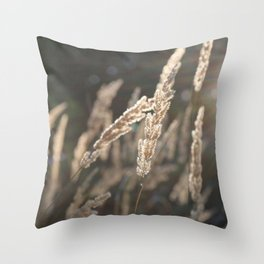 sungras Throw Pillow