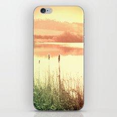 Reeds iPhone & iPod Skin