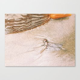 dragon fly beach Canvas Print