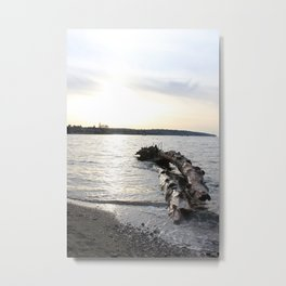 Logs Kits Beach Sunset Metal Print