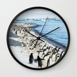 Marching Adelies at Brown Bluff, Antarctica Wall Clock