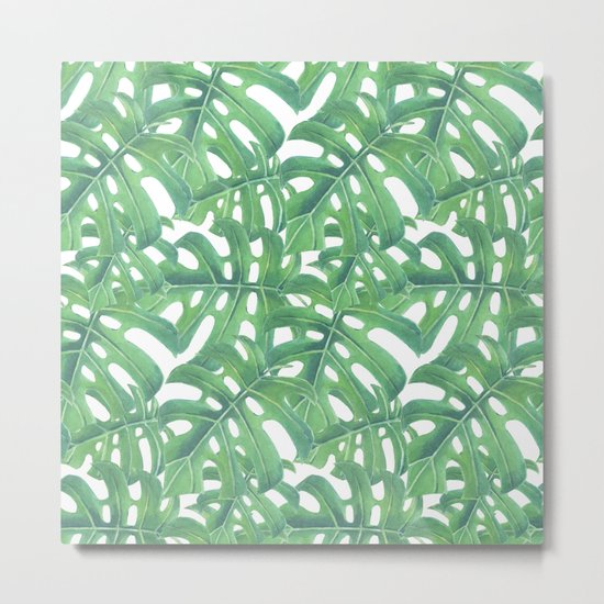 Green monstera tropical leaves pattern  on white background Metal Print