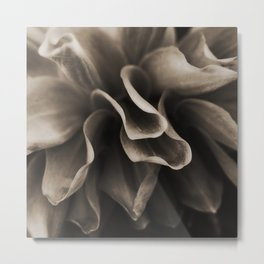 Sepia Florals Set - dahlia iii Metal Print