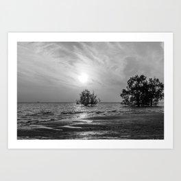 Mangrove sunrise, Phang Nga Bay, Thailand Art Print