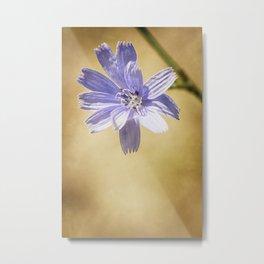 wild flowers #120 Metal Print