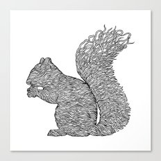 SQUIRREL LINES Canvas Print