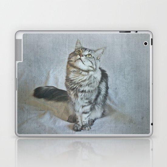 C A T Laptop & iPad Skin