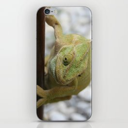 Chameleon: Fifty Shades of Green iPhone Skin