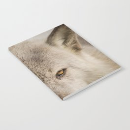 Wolf Eyes Wildlife Photography - Animal Nature Photo Notebook