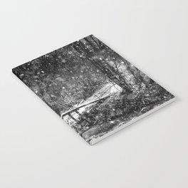 Winter Crossing Notebook