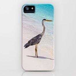 Maldivian Grey Heron iPhone Case