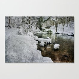Snow on the River bank Canvas Print