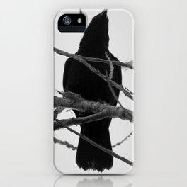 Crow Spirit iPhone Case
