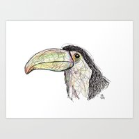 toucan Art Prints featuring Toucan by Ursula Rodgers