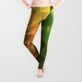 Exotic Red and Yellow Tropical Hawaiian Flowers Leggings