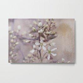 Vintage Spring flowers Metal Print