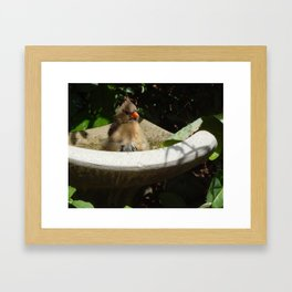 Classic beauty Framed Art Print